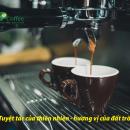 Hiup Coffee: Tuyệt tác của thiên nhiên - hương vị của đất trời!