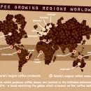 Phát triển chỉ dẫn địa lý Cà phê Buôn Ma Thuột
