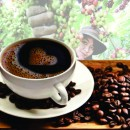 An Thai Coffee: The quintessence of nature