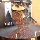 Quảng Trị: Đề nghị không cấp phép xây dựng thêm nhà máy chế biến cà phê