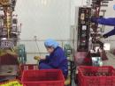 AnTháiCafé: Hướng đến sản xuất cà phê theo quy trình khép kín